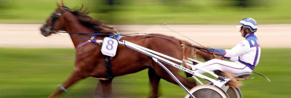 Pferderennen Mariendorf